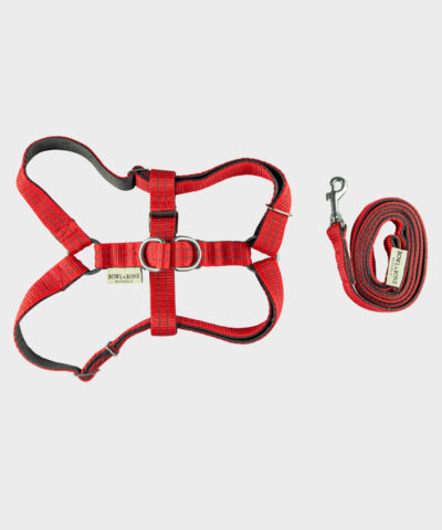HUNDEGESCHIRR ACTIVE RED MIT LEINE VON BOWL AND BONE REPUBLIC