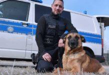 Kein Pardon für Langfinger: Polizeihund Ivo hat den Dreh raus